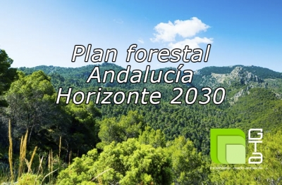 PLAN FORESTAL ANDALUCIA HORIZONTE 2030