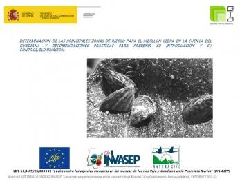 Determinación de las principales zonas de riesgo para el mejillón cebra en la Cuenca del Guadiana