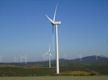 Vigilancia ambiental explotación Complejo Eólico del Andévalo