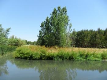 Restauración ambiental de cauces y espacios degradados en la Sierra de Huelva