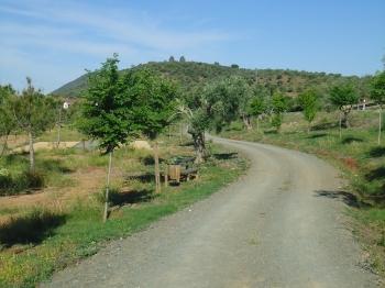 Restauración ambiental de escombrera y arroyo La Bujarda