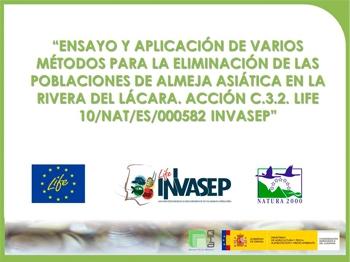Ensayo y aplicación de varios métodos para la eliminación de las poblaciones de Almeja Asiática en la Rivera del Lácara